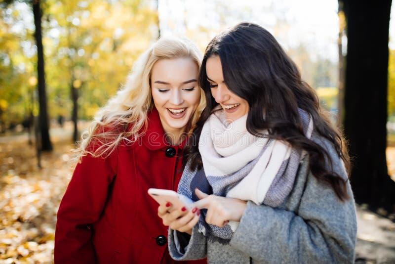 笑和分享在一个巧妙的电话的两个滑稽的妇女朋友社会媒介录影户外在秋天公园 免版税库存照片