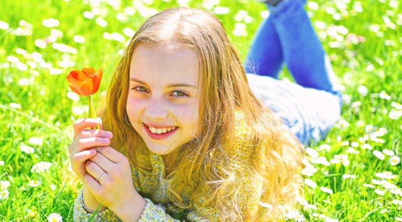 笑容的女孩拿着红色郁金香花,享受芳香 孩子享受春天好日子,当说谎在有雏菊的时草甸 免版税库存图片
