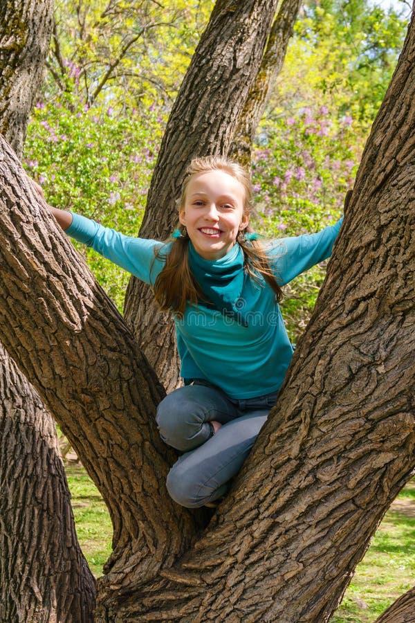 笑的十几岁的女孩在公园爬一棵树 库存图片