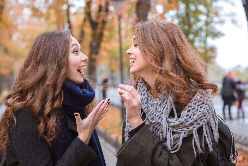笑的妇女谈话在秋天公园 库存图片