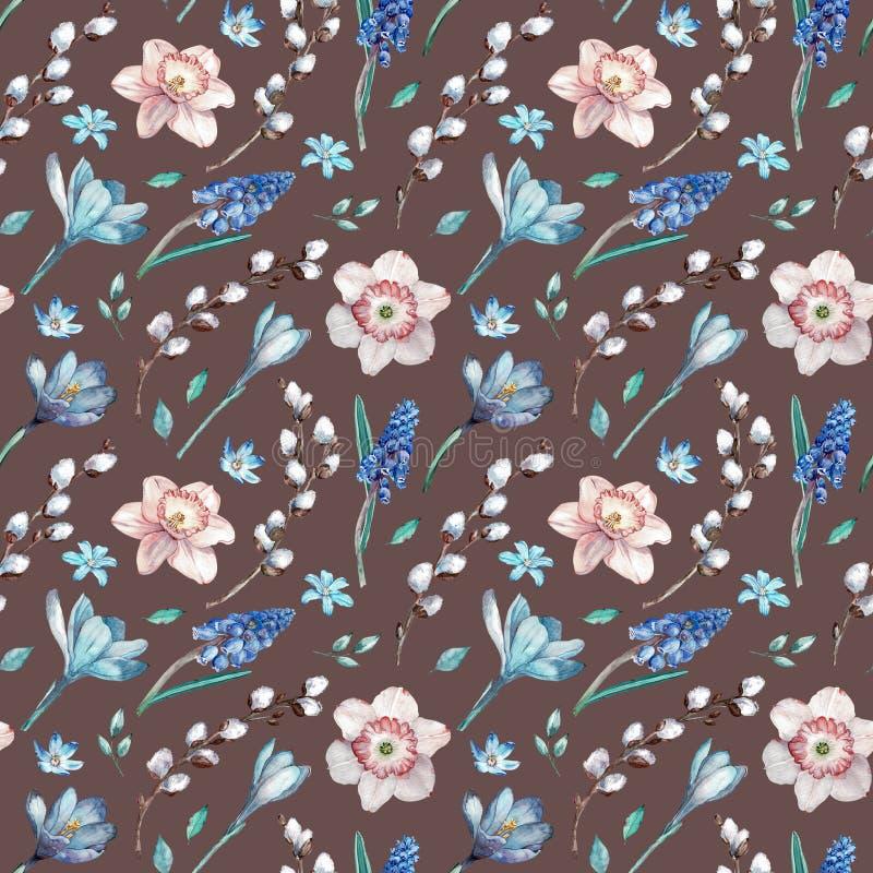 第一个春天花和杨柳分支 在棕色背景的水彩无缝的样式 向量例证