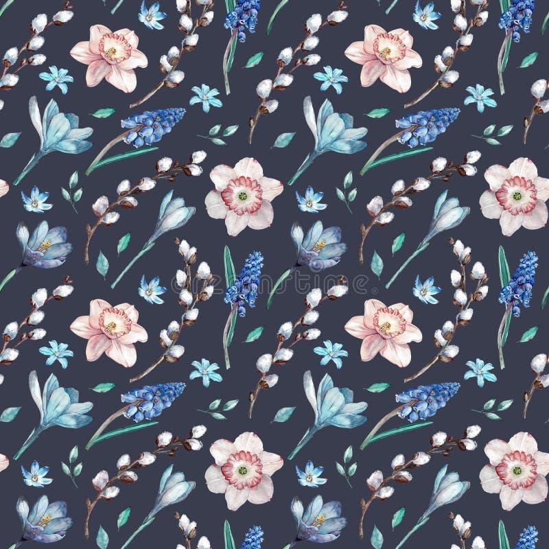 第一个春天花和杨柳分支 在深蓝背景的水彩无缝的样式 向量例证