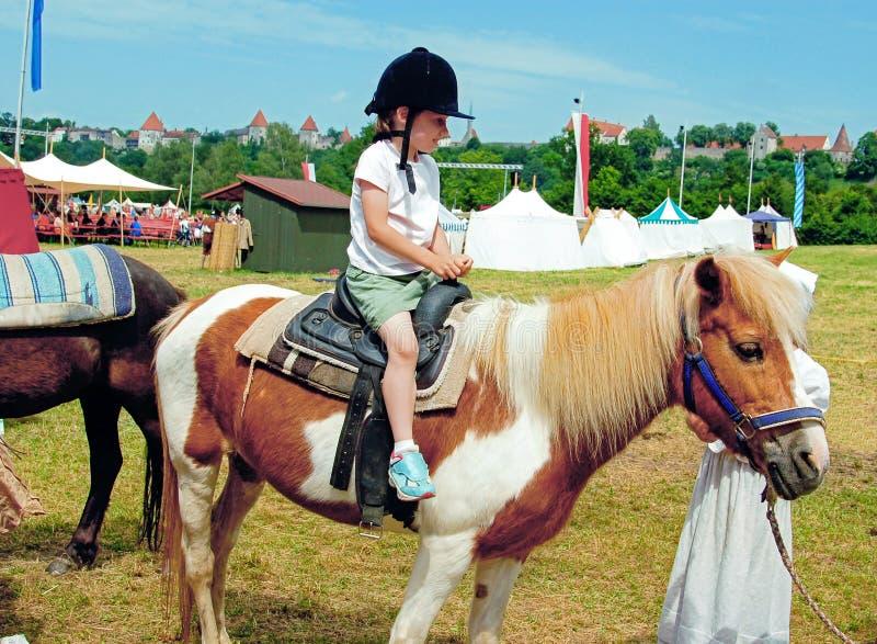 第一小马乘驾 库存照片