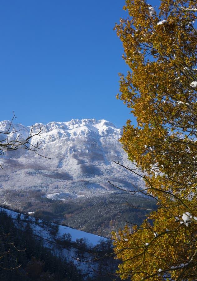 第一秋天降雪在Aizkorri - Aratz,塞加马的自治市自然公园  库存照片