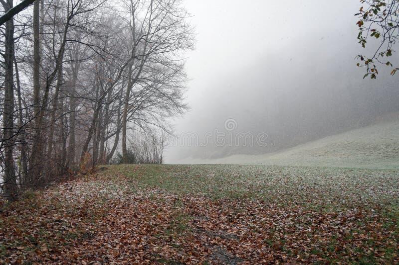 第一雪在Liectenstein 免版税库存图片
