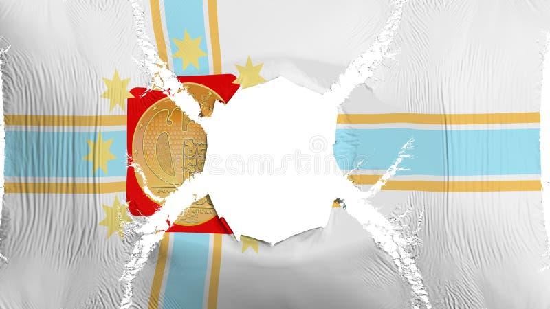 第比利斯与孔的市旗子 皇族释放例证