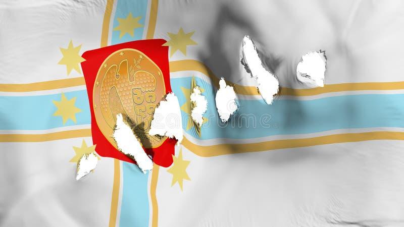 第比利斯市旗子穿孔了,弹孔 皇族释放例证