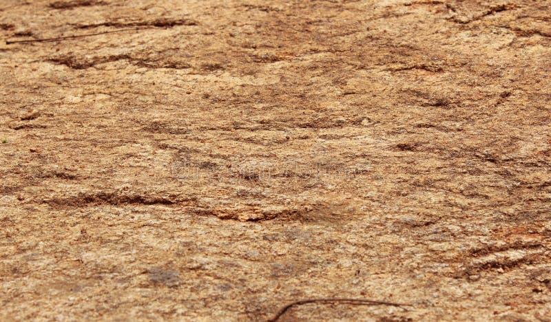 2009第9个背景7月照片岩石被采取的纹理 图库摄影