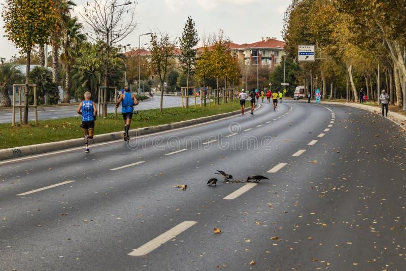 第40场国际伊斯坦布尔马拉松和运动员 图库摄影