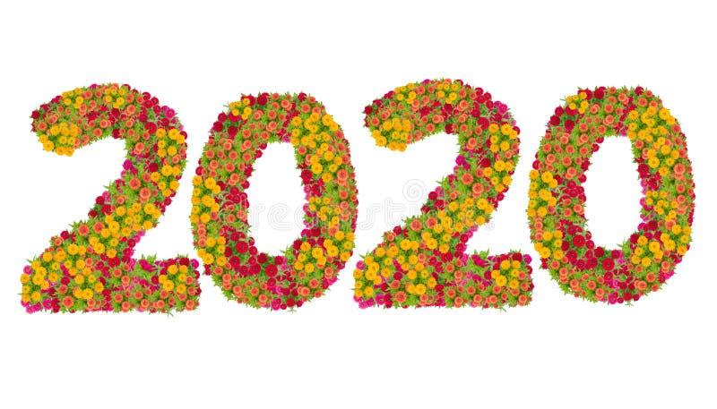 第2020由百日菊属花做了 免版税库存照片
