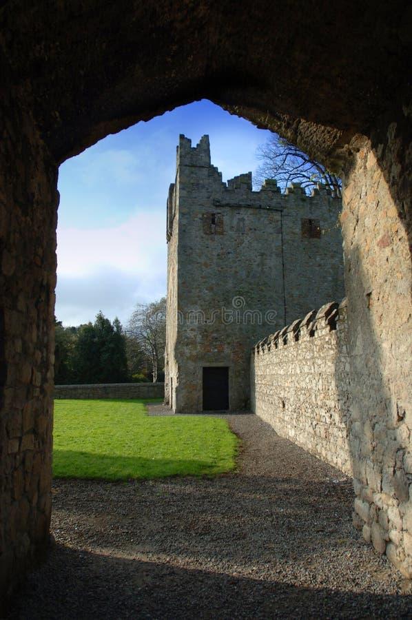第17世纪城堡/Monkstown修道院 库存图片