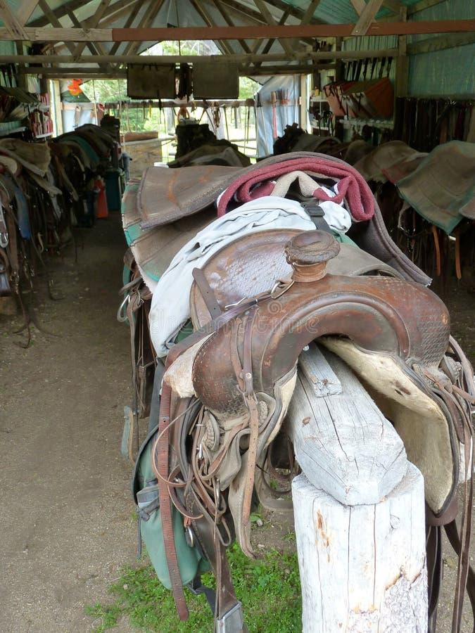 等待他们的马的马鞍 免版税库存图片
