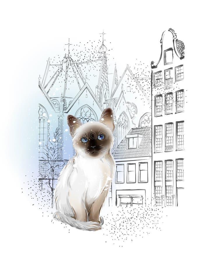等待所有者的孤独的泰国小猫在冬天城市 库存照片