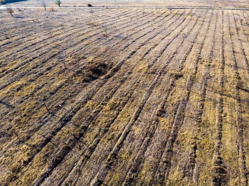 等待新的农业季节的空的农场土地 库存图片