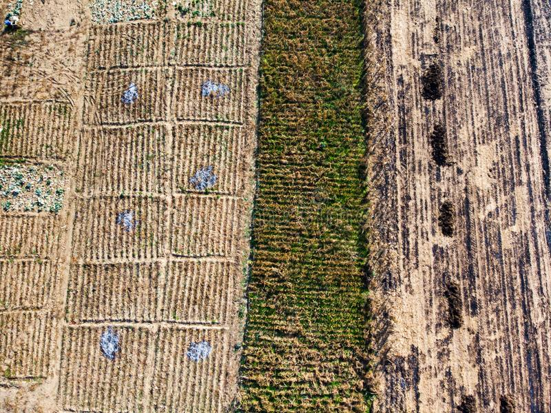 等待新的农业季节的空的农场土地 图库摄影
