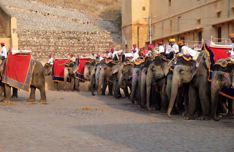 等待游人的装饰的大象在琥珀色的堡垒在斋浦尔 免版税库存照片