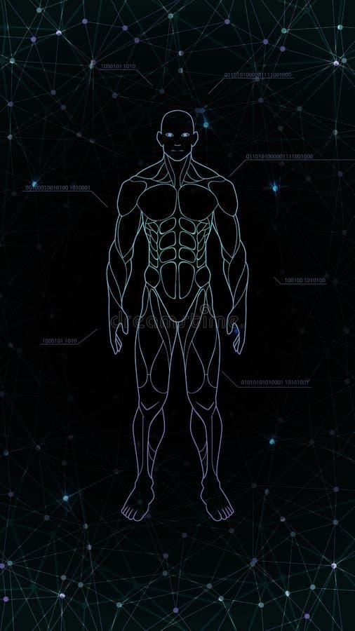 等高形状人体解剖学霓虹全息图被射出在黑背景,科学幻想小说接口设计元素,illustrati 库存例证