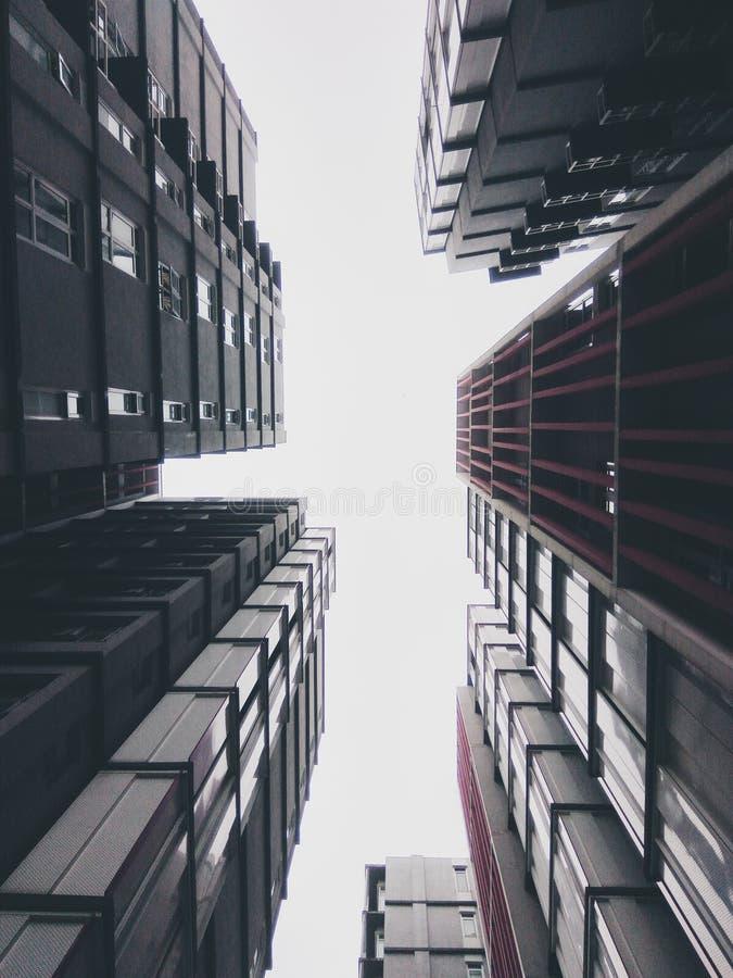 建筑学启发 库存照片