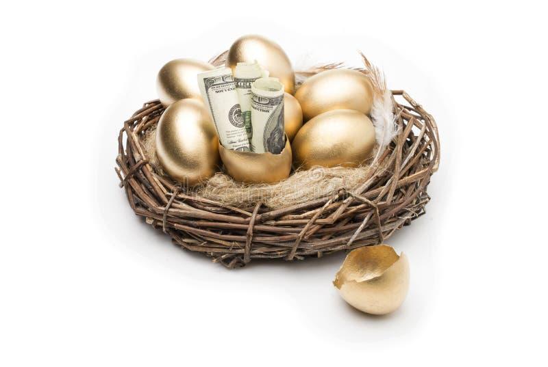 筑巢用在白色背景的金黄鸡蛋 在巢的金黄鸡蛋与美元 免版税图库摄影
