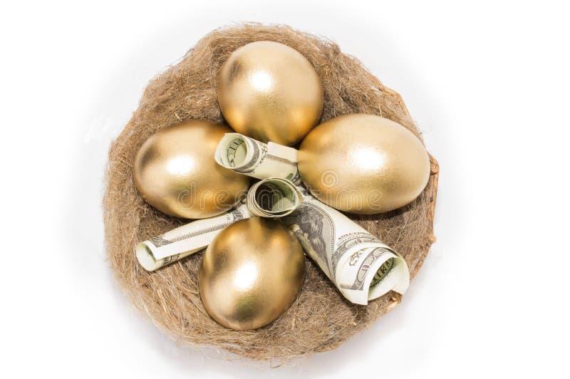 筑巢用在白色背景的金黄鸡蛋 在巢的金黄鸡蛋与美元 免版税库存照片