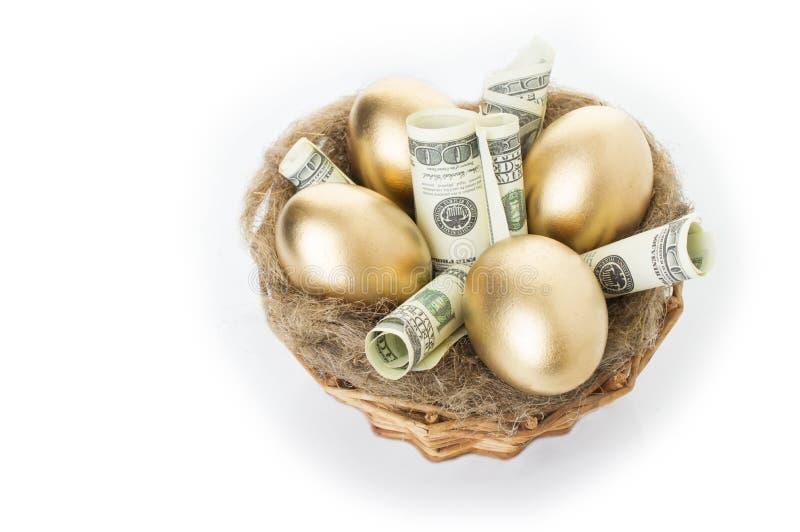 筑巢用在白色背景的金黄鸡蛋 在巢的金黄鸡蛋与美元 库存图片