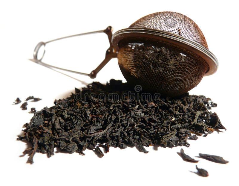 筛子茶 免版税库存图片