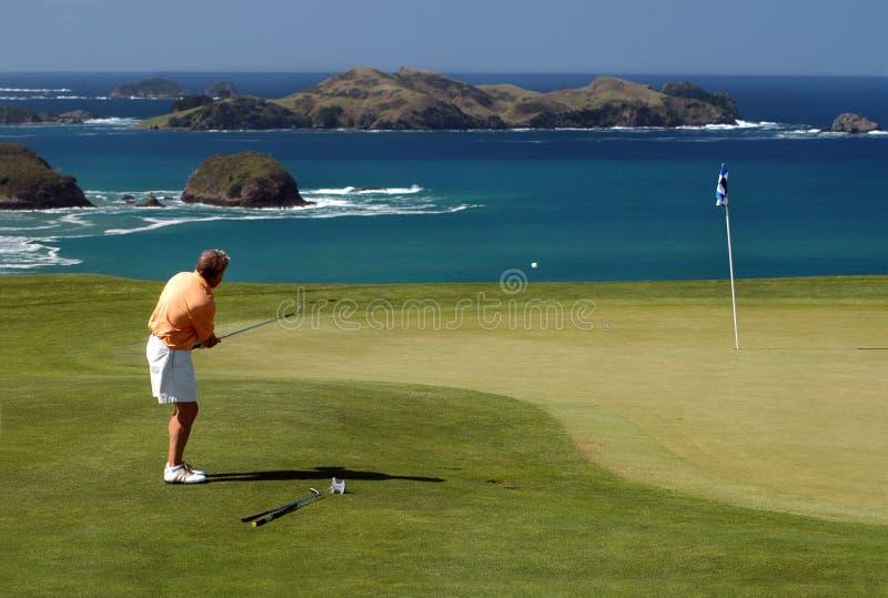 筹码高尔夫球 库存照片