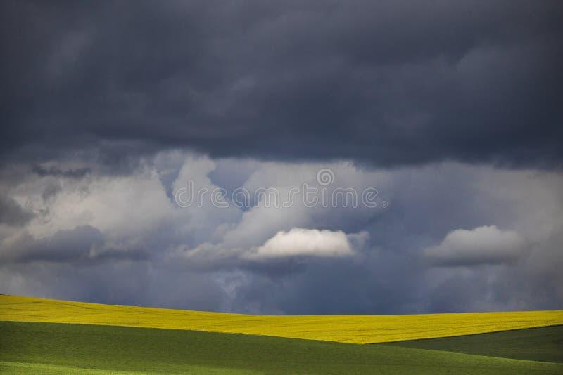 简单派照片在绿色和黄色领域的剧烈的云彩 免版税库存图片