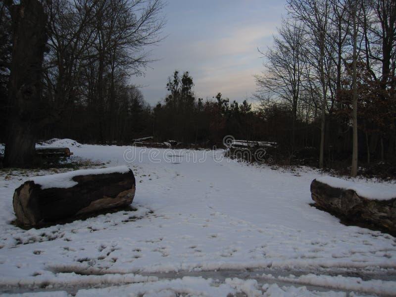 简单的多雪的轮胎轨道-画象 图库摄影