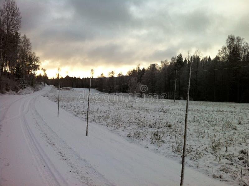简单的多雪的轮胎轨道-画象 库存图片