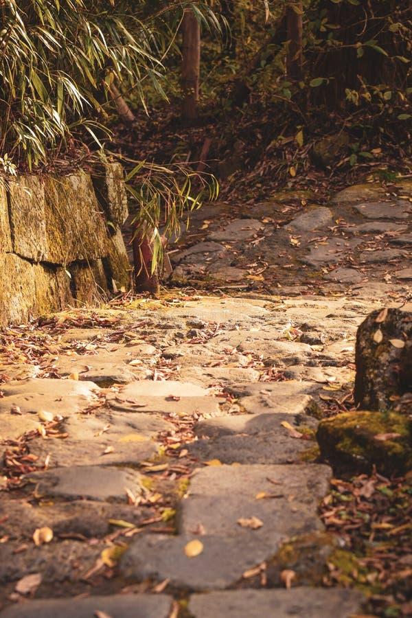 简单的步,日光日本 图库摄影