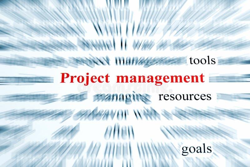 管理项目 向量例证