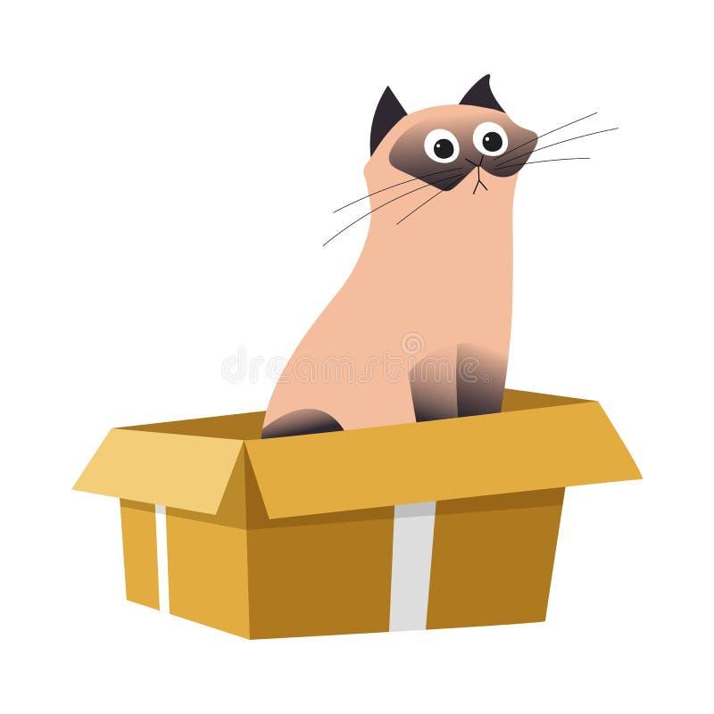 箱内猫、暹罗猫和纸箱、宠物或家畜 向量例证