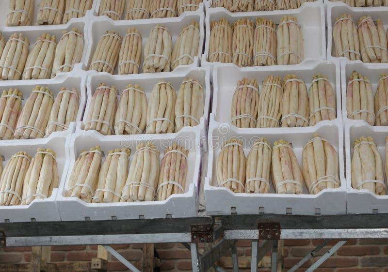 箱多苯乙烯在有白色的蔬菜水果商商店  库存照片