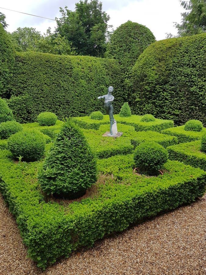 箱子分配为花坛的区域庭院 免版税图库摄影
