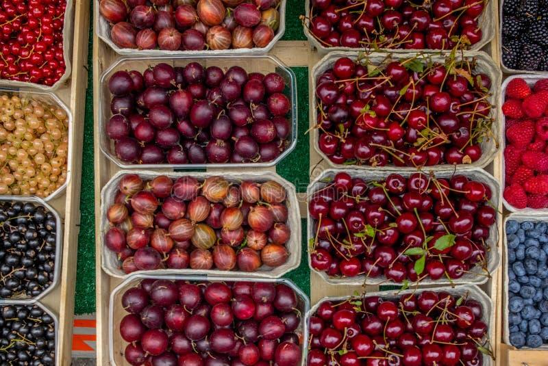 箱子新鲜的莓果在一个农夫`市场上在慕尼黑在德国 免版税库存图片