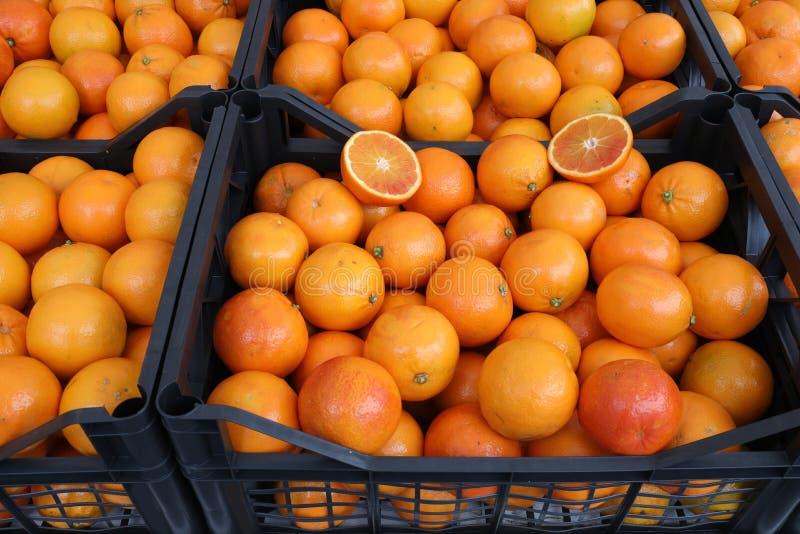 箱子有很多新鲜的成熟桔子种植与生物技术 库存图片