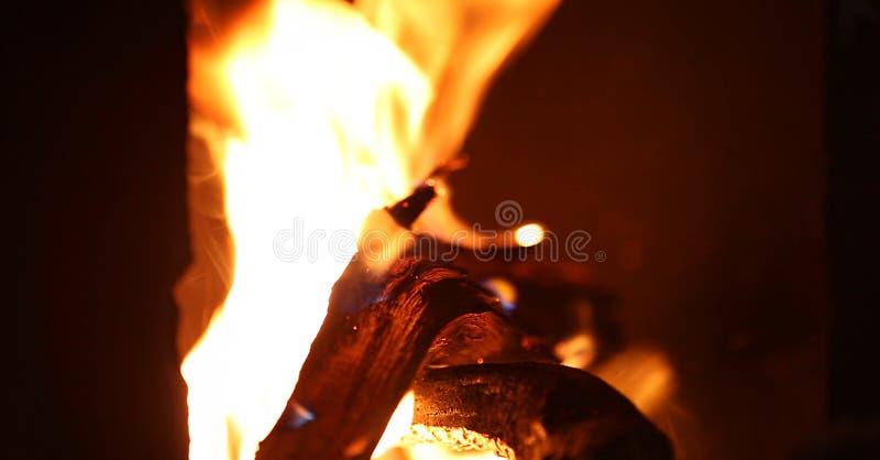 篝火在一个白色夏夜, 库存照片