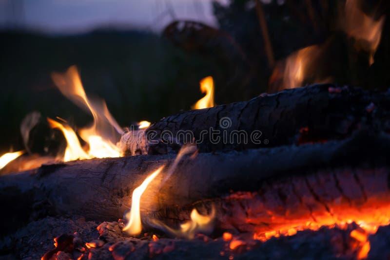 篝火在夏夜里 库存照片