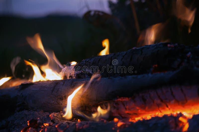 篝火在夏夜里 免版税图库摄影