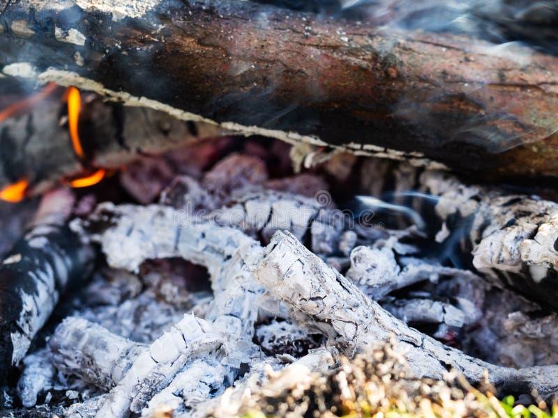 篝火,极端关闭闷燃的灰  免版税库存图片