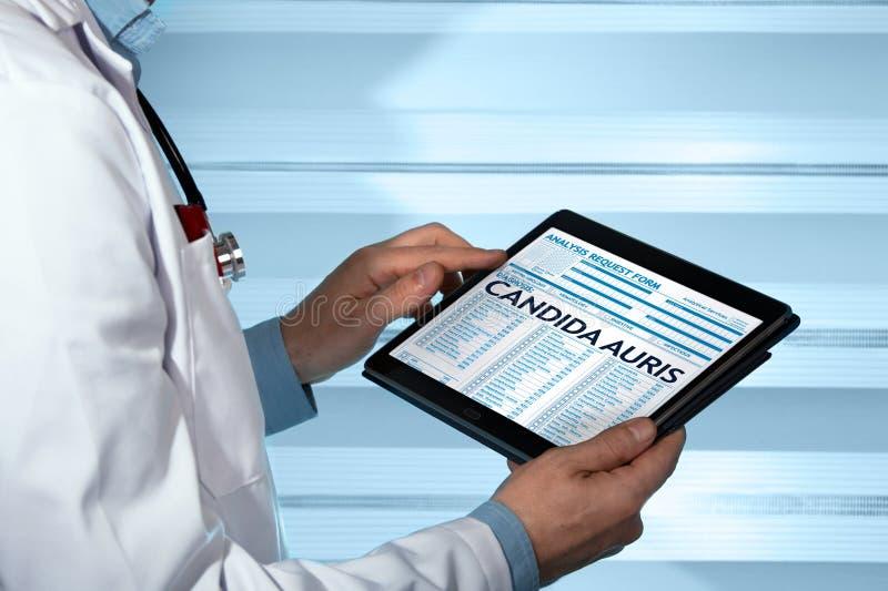 篡改拿着有假丝酵母auris诊断的片剂在数字式 免版税库存照片