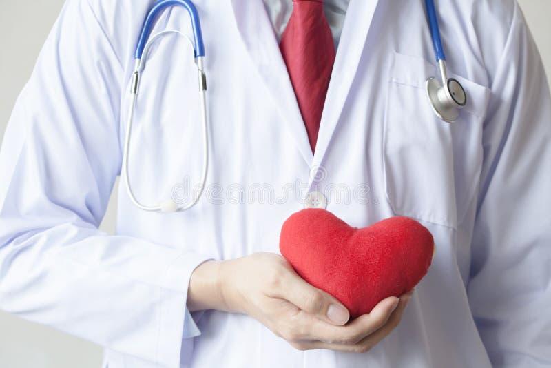 篡改显示同情并且支持拿着在他的上的红色心脏 库存图片