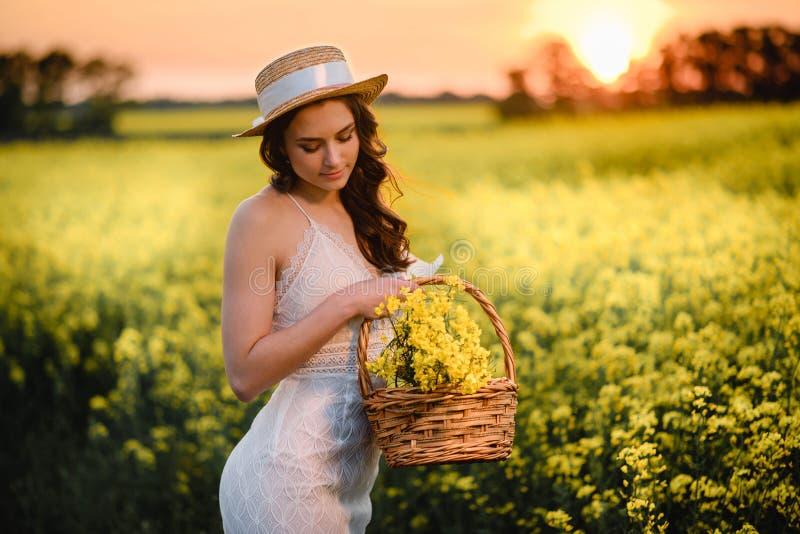 篮子中黄色野花的特写 库存图片