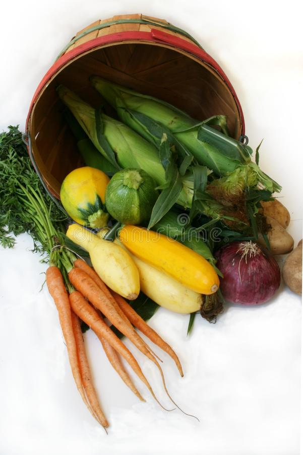 篮子农厂新鲜农产品 免版税库存照片