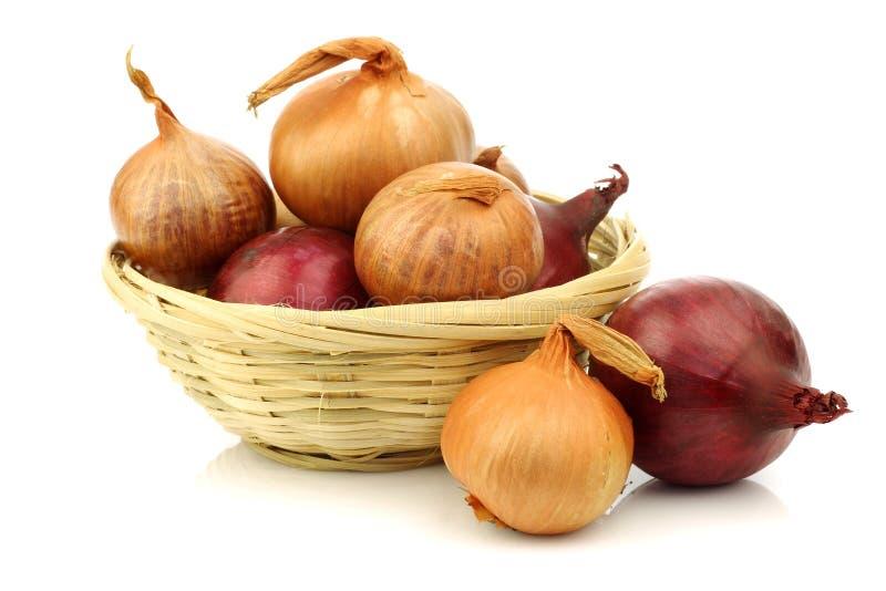 篮子棕色葱红色柳条 免版税库存照片