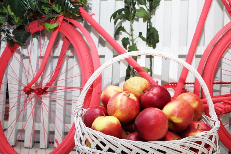 篮子用在自行车的背景的苹果 演播室装饰 免版税图库摄影
