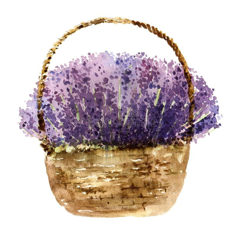 篮子用淡紫色 皇族释放例证