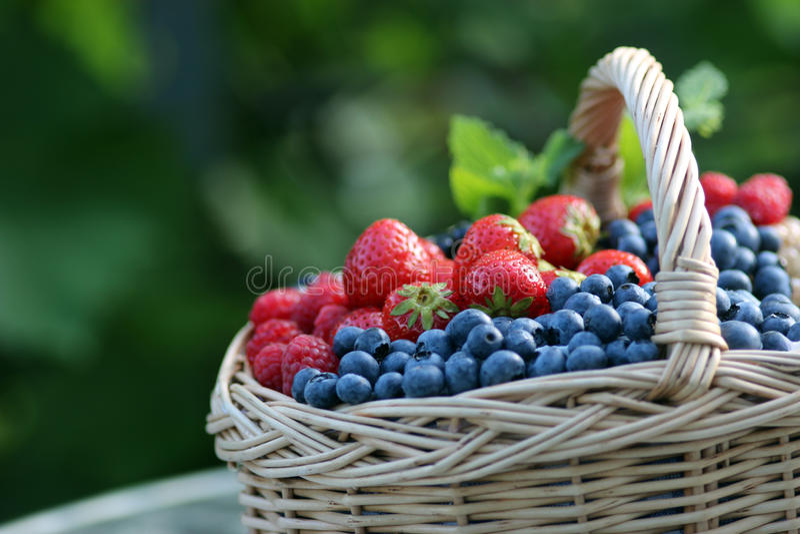 篮子用站立的莓果户外 免版税库存图片