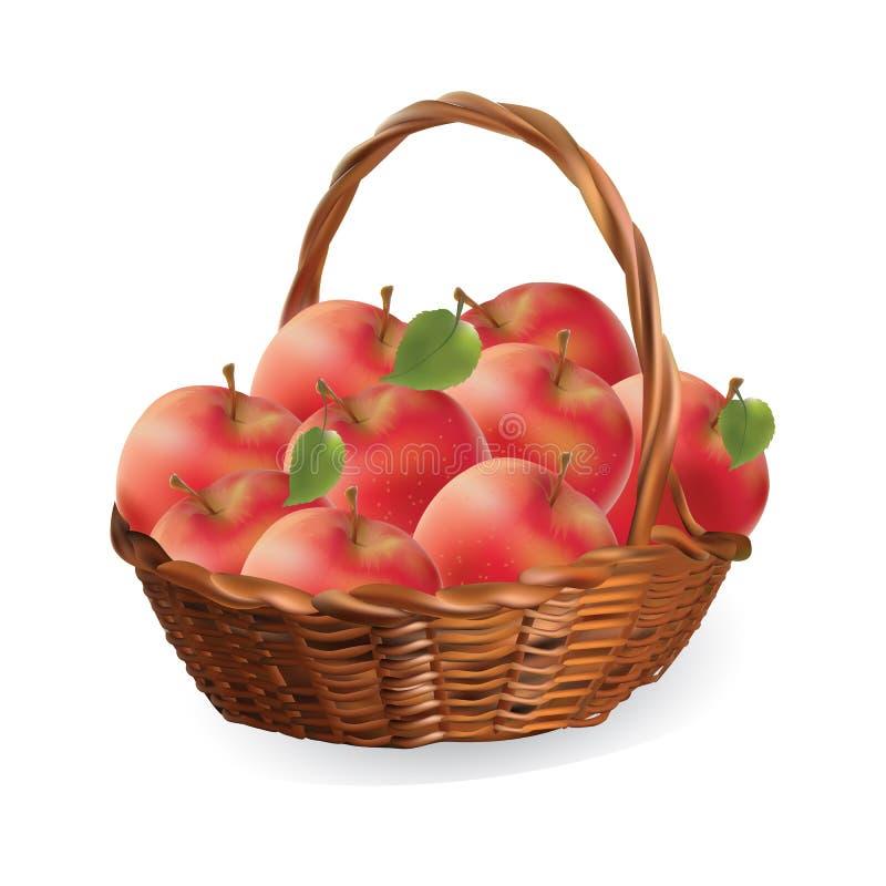 篮子用苹果 收获苹果传染媒介 向量例证